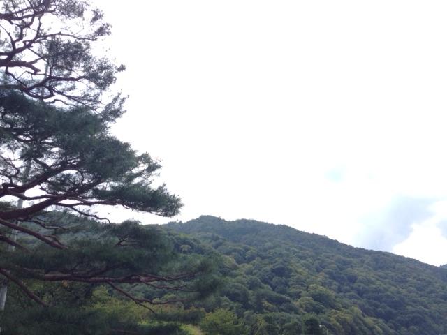 嵐山、中学校教師、サイクリング、休日、リラックス、ストレス解消、方法、プライベート、運動